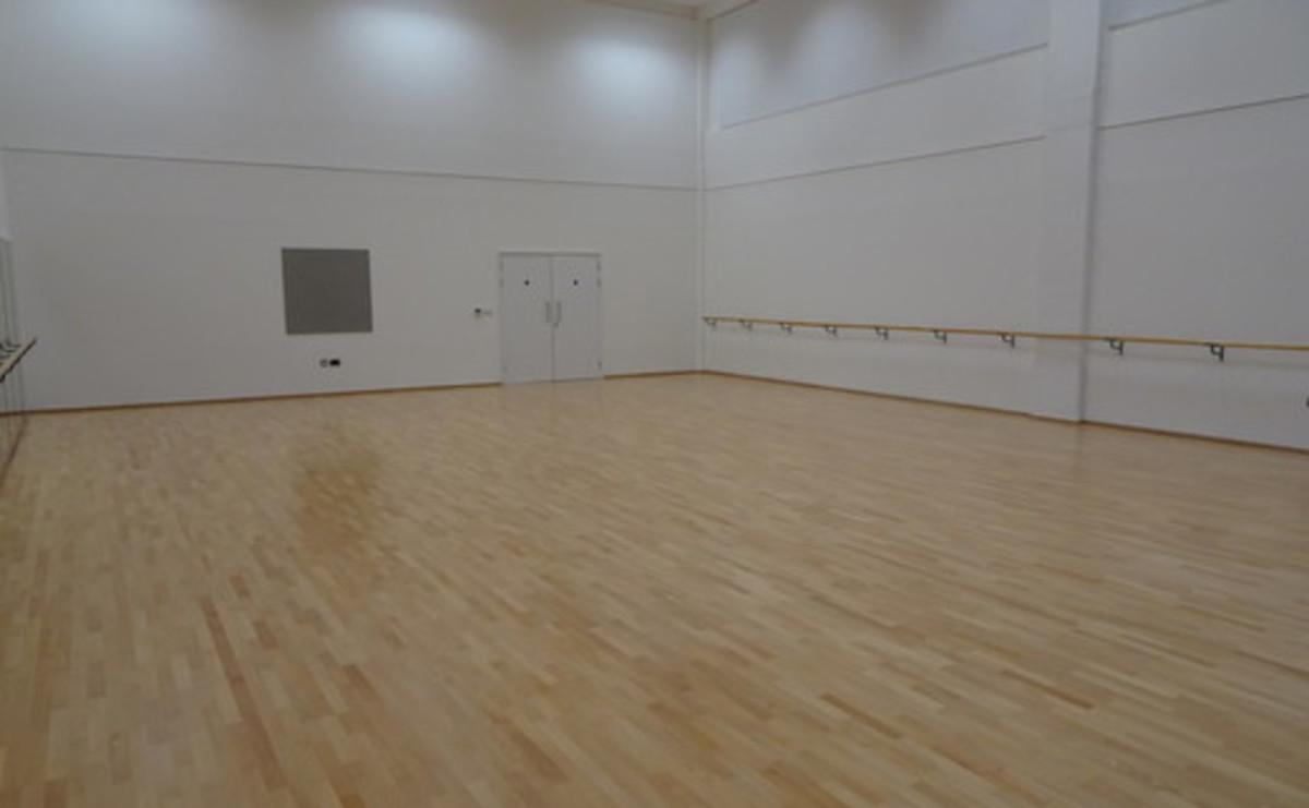 Activity Studio - 141 (Dance) - SLS @ Ark Elvin Academy - Brent - 2 - SchoolHire