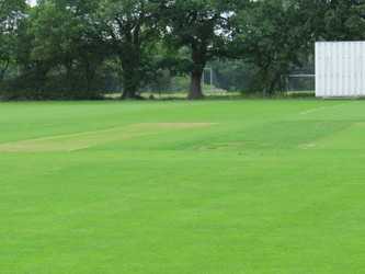 Cricket Pitch (First XI) - Chigwell School - Essex - 1 - SchoolHire
