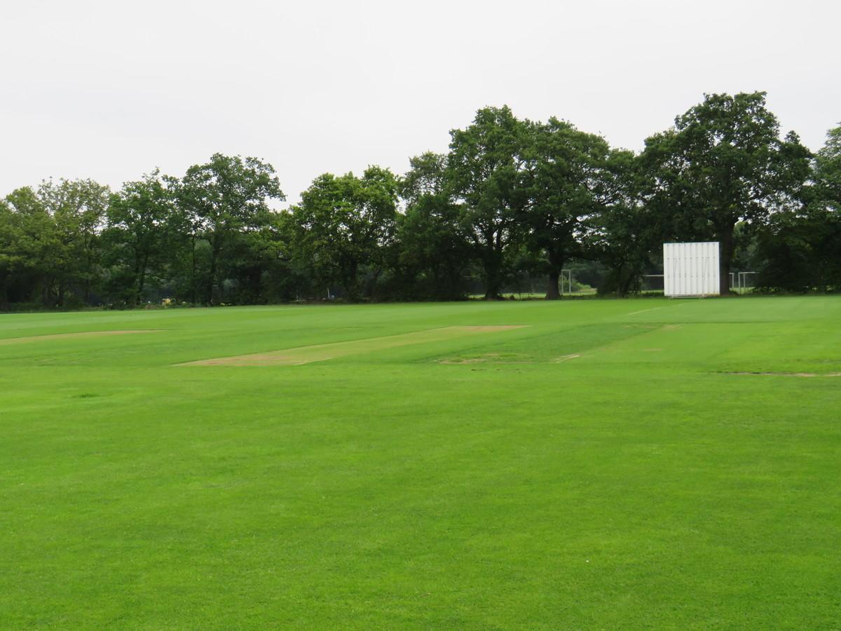 Cricket Pitch (Middle Field) - Chigwell School - Essex - 3 - SchoolHire