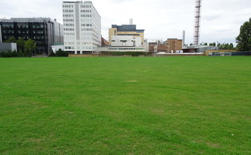 Grass Pitch - SLS @ Ark Burlington Danes Academy - Hammersmith and Fulham - 2 - SchoolHire