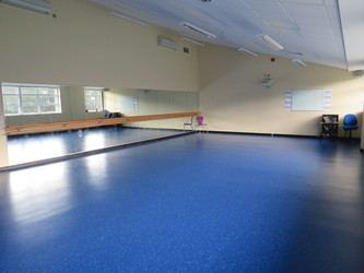Dance Studio - Riddlesdown Collegiate - Surrey - 2 - SchoolHire