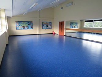 Dance Studio - Riddlesdown Collegiate - Surrey - 4 - SchoolHire