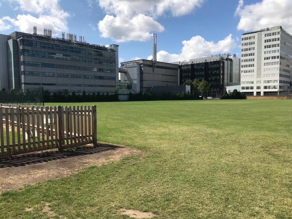 Grass Area - SLS @ Ark Burlington Danes Academy - Hammersmith and Fulham - 3 - SchoolHire