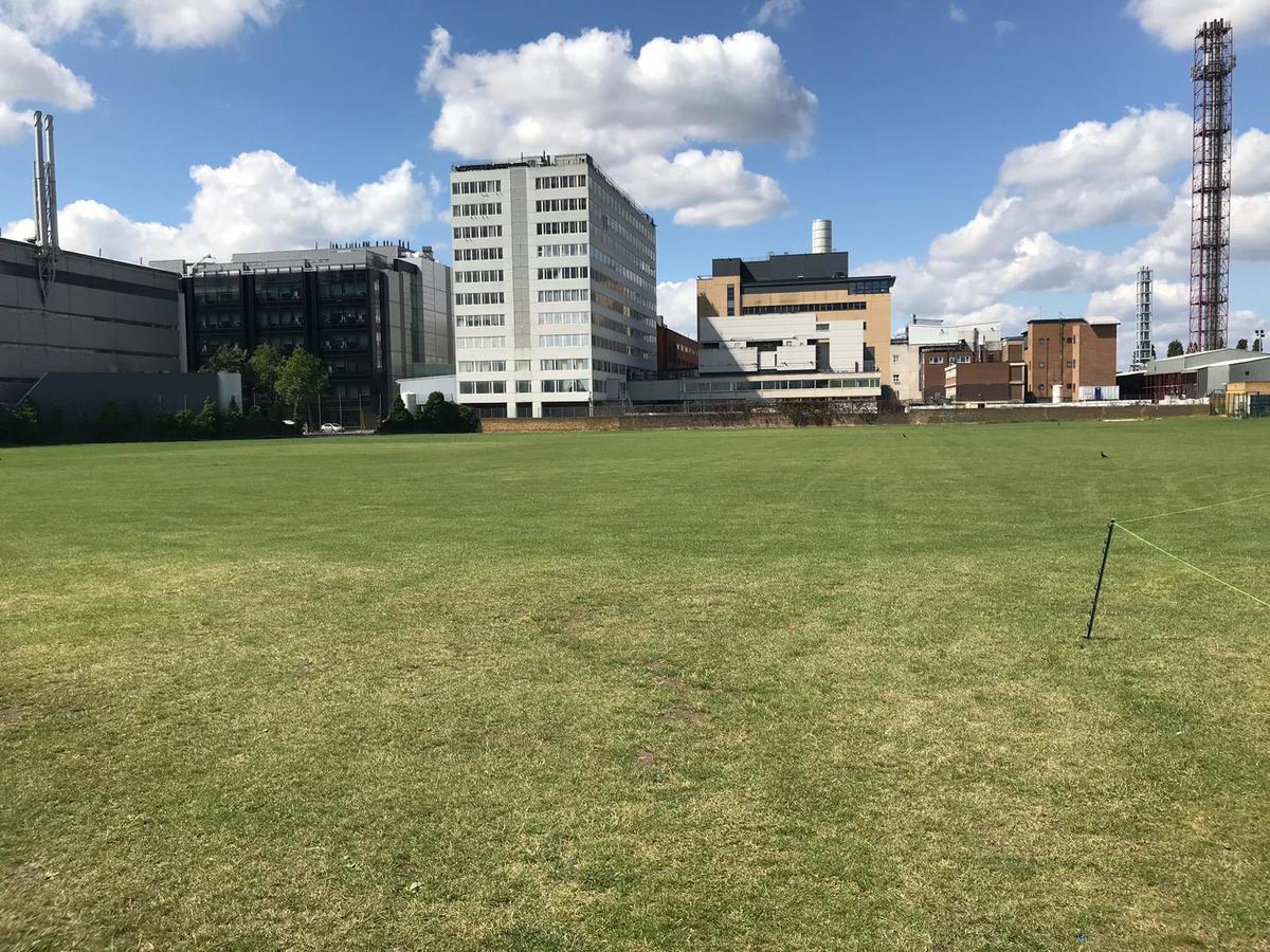 Grass Area - SLS @ Ark Burlington Danes Academy - Hammersmith and Fulham - 4 - SchoolHire