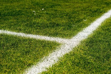 Grass Football Pitch (9-a-side) - Stoke Damerel Community College - Plymouth - 1 - SchoolHire