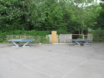 Playground - Thomas More Catholic School - Croydon - 3 - SchoolHire