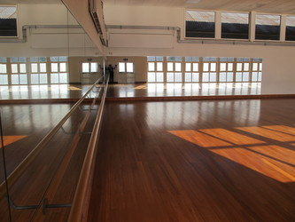 Dance Studio - Carter Community School - Poole - 2 - SchoolHire