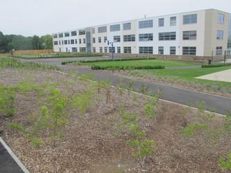 Avanti House Secondary School - Harrow - 2 - SchoolHire