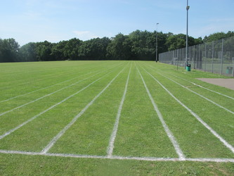 School Field - Pitch / Athletics - Toynbee School - Hampshire - 1 - SchoolHire