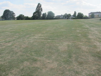 Field for Helicopter Landing - Preston Manor School - Brent - 4 - SchoolHire