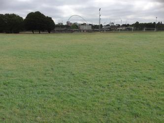Grass Football Pitch (11 a-side) - Preston Manor School - Brent - 2 - SchoolHire