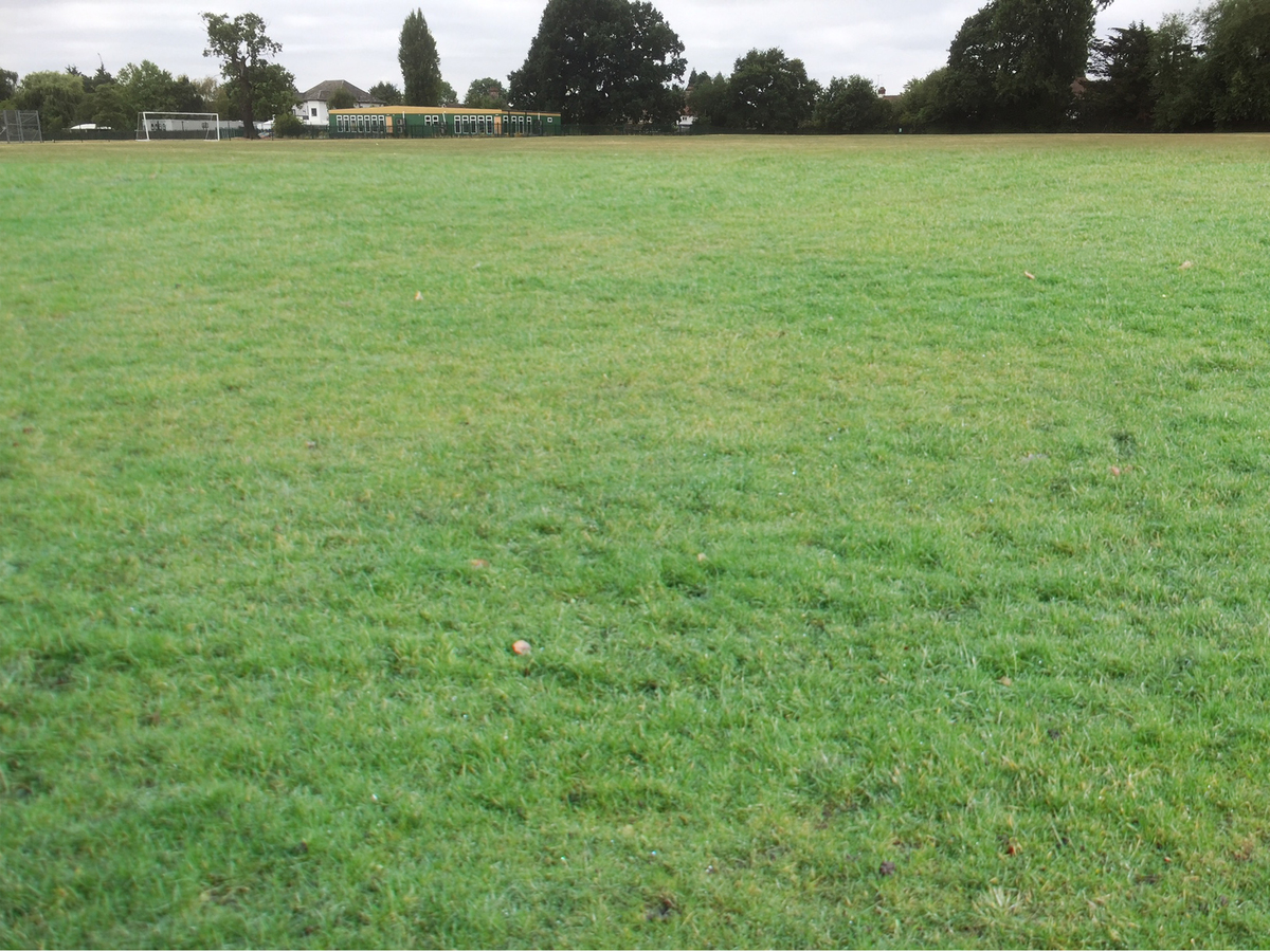 Grass Football Pitch (11 a-side) - Preston Manor School - Brent - 3 - SchoolHire
