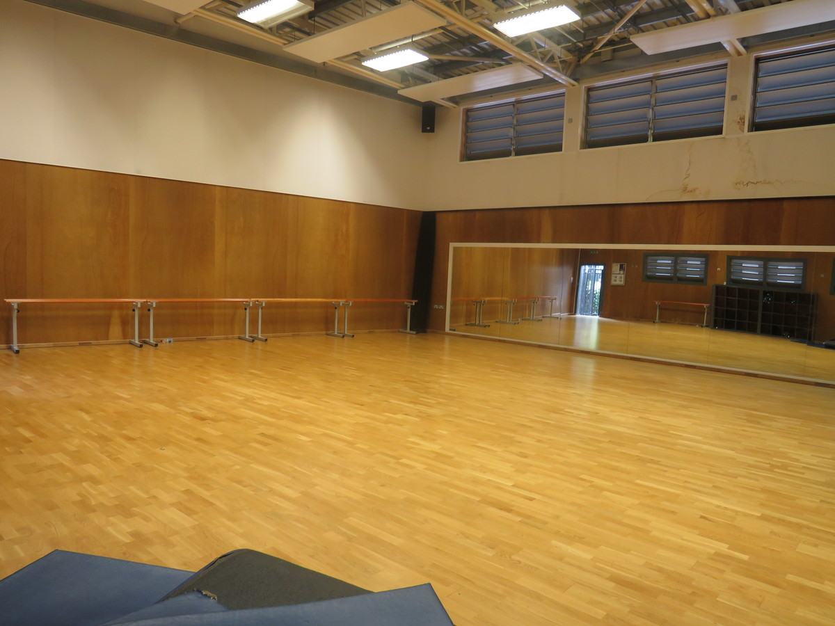 Dance Studio - Gladesmore Community School - Haringey - 1 - SchoolHire