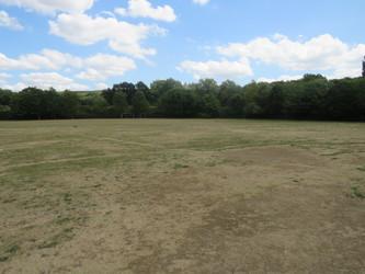 Grass Area - The Warwick School - Surrey - 1 - SchoolHire