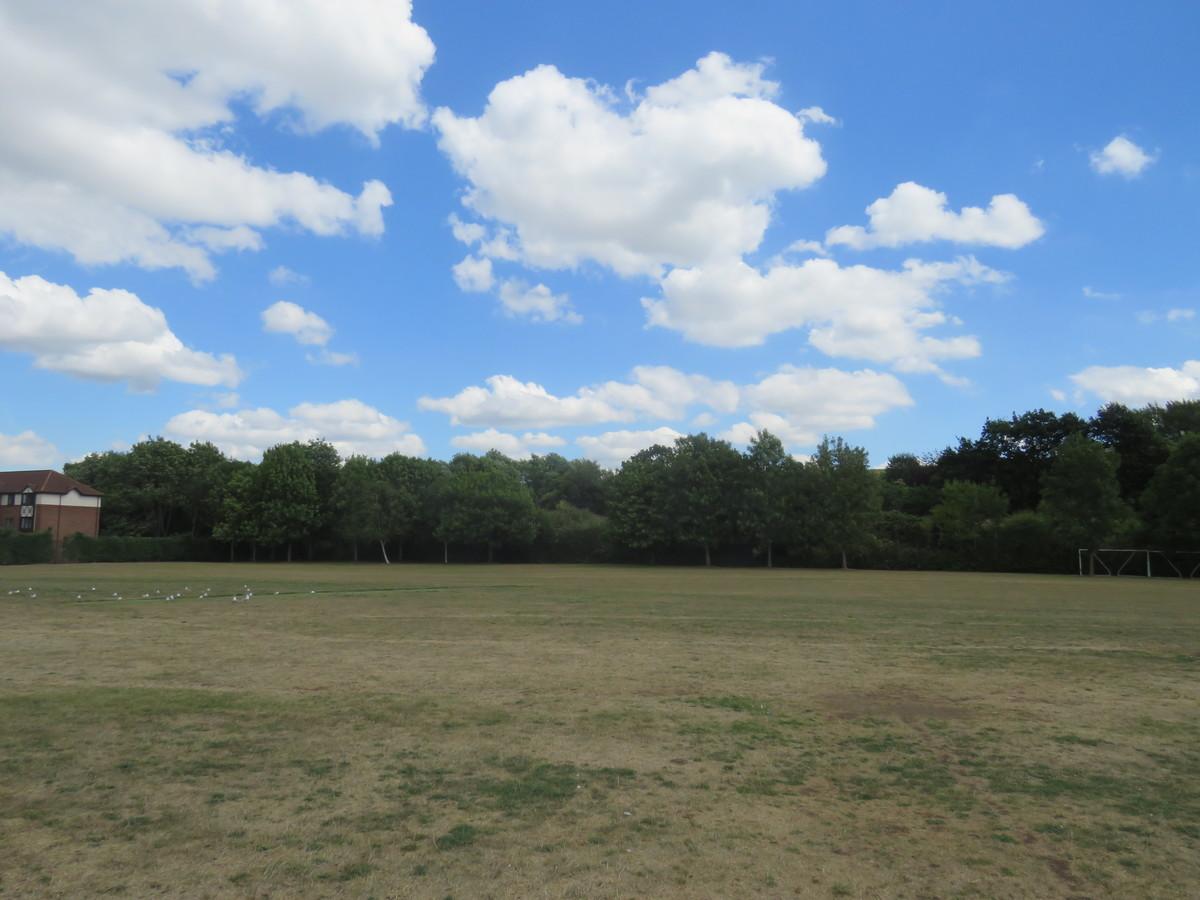 Grass Area - The Warwick School - Surrey - 4 - SchoolHire